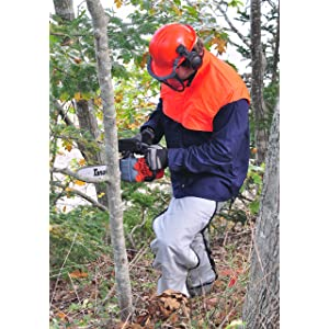 Safety Tips Chainsaw Use