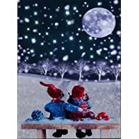 Christmas Moon Illuminated Wall Canvas (30x40cm)