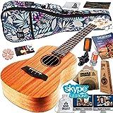 Ukulele Starter Kit - Includes Mahogany Uke, Compression Sponge Case, Aquila Strings, Felt Picks, Tuner, Chord Stamp, Chord Chart, Leather Strap with Live Online Lessons (Color: Reyesano Bag, Tamaño: Concert)