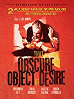 The Obscure Object Of Desire (English Subtitled)