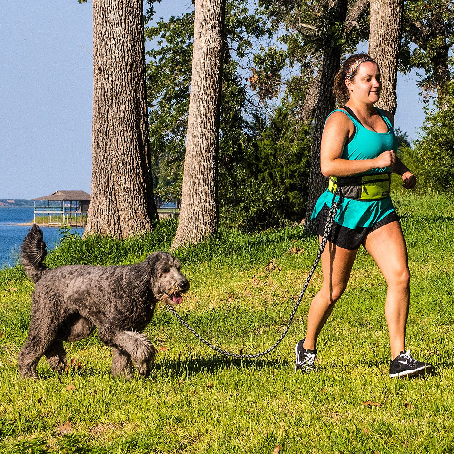 what is the best dog leash for runners