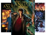 img - for Angel: After The Fall (9 Book Series) book / textbook / text book