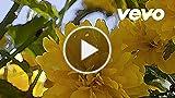 John Barbirolli - Pan Flute & Organ - Barbirolli:...