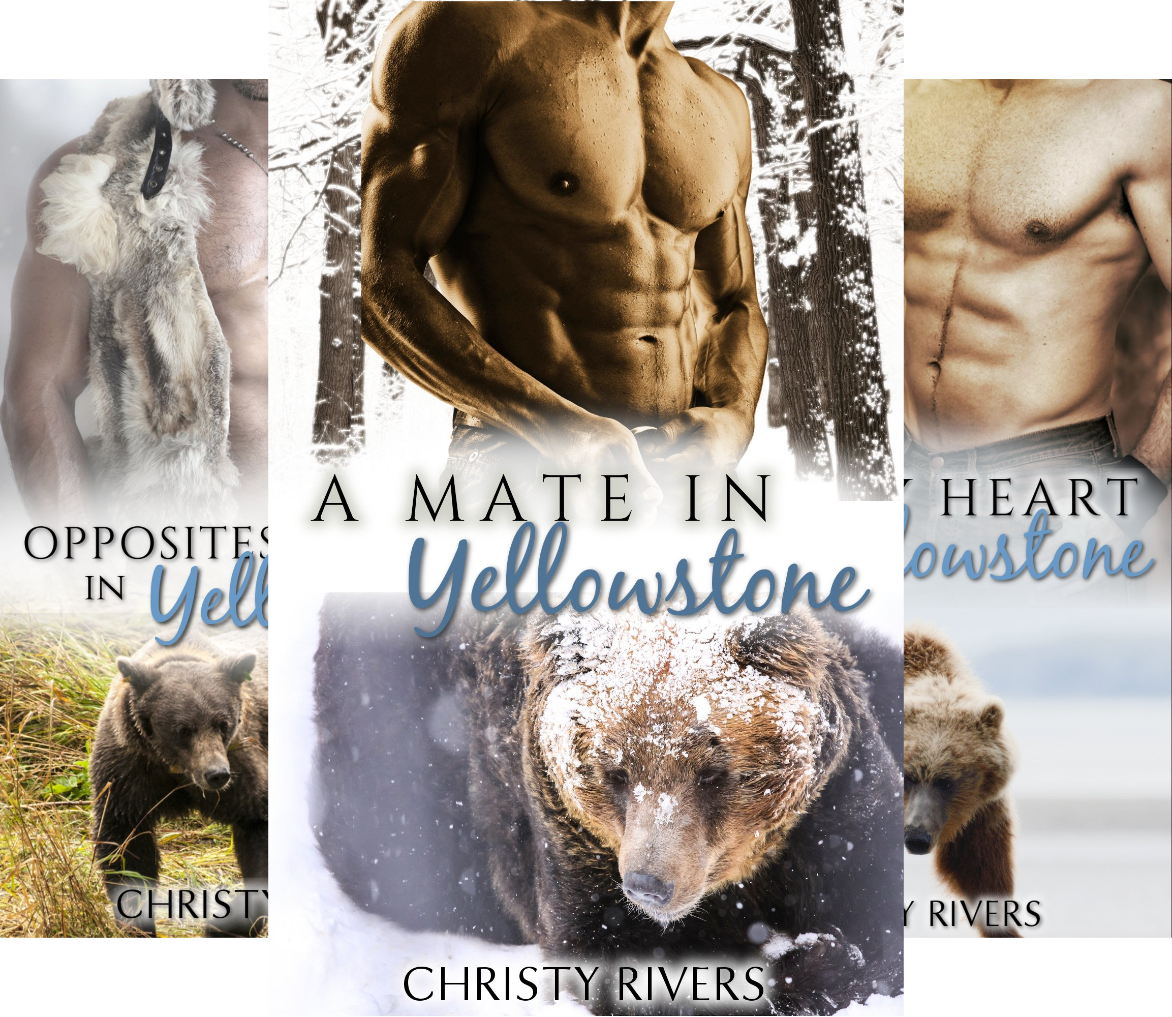 Yellowstone Mates (4 Book Series)