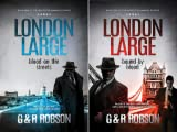 img - for London Large (2 Book Series) book / textbook / text book