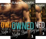 Owned by the Mafia Bad Boy (4 Book Series)