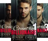 Country Billionaire (3 Book Series)