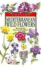 Mediterranean wild flowers by Christopher…