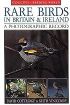Rare Birds in Britain and Ireland: A…