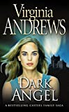 V.C. Andrews: DARK ANGEL