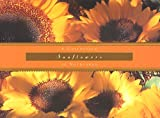 Kleinman, Kathryn: Sunflowers: Notecards