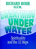 Rohr, Richard: Breathing Underwater: Spirituality and the 12 Steps