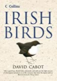 Cabot, David: Irish Birds