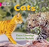 Llewellyn, Claire: Cats: Band 01b/Pink B (Collins Big Cat)