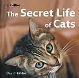 Taylor, David: The Secret Life of Cats