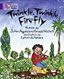 Agard, John: Twinkle, Twinkle, Firefly: Band 8/ Purple (Collins Big Cat)