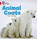 Llewellyn, Claire: Animal Coats: Red A/ Band 2A (Collins Big Cat)