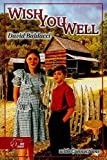 David Baldacci: HRW Library: Student Edition with Connections Wish You Well (HRW Library (Holt))