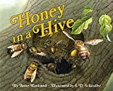 Rockwell, Anne: Honey in a Hive (Let's-Read-and-Find-Out Science 2)