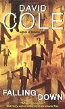 Cole, David: Falling Down (Laura Winslow Mysteries)