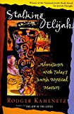 Kamenetz, Rodger: Stalking Elijah: Adventures with Today's Jewish Mystical Masters