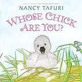 Tafuri, Nancy: Whose Chick Are You?