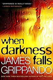 When Darkness Falls (Jack Swyteck Novel) by…
