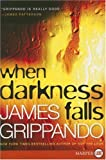 Grippando, James: When Darkness Falls