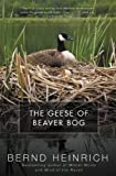 Heinrich, Bernd: The Geese Of Beaver Bog