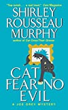 Murphy, Shirley Rousseau: Cat Seeing Double