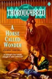 Campbell, Joanna: A Horse Called Wonder