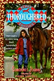 Campbell, Joanna: Samantha's Journey (Thoroughbred Super Edition)
