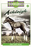 Campbell, Joanna: The Lost Foal (Ashleigh, No. 8)