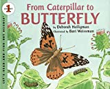 Heiligman, Deborah: From Caterpillar to Butterfly