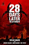 Ennis, Garth: 28 Days Later: The Aftermath