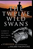 Starhawk: The Twelve Wild Swans