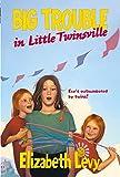 Levy, Elizabeth: Big Trouble in Little Twinsville