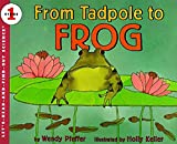 Pfeffer, Wendy: From Tadpole to Frog