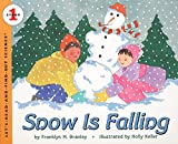Branley, Franklyn M.: Snow Is Falling (Let's-Read-and-Find-Out Science, Stage 1)