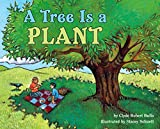 Clyde Robert Bulla: A Tree Is a Plant (Let's-Read-and-Find-Out Science)