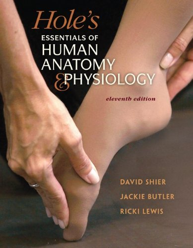 combo-loose-leaf-version-of-holes-essentials-of-human-anatomy-physiology-with-apr-30-student-online-access-card