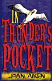 Aiken, Joan: In Thunder's Pocket (Red Fox Read Alone)