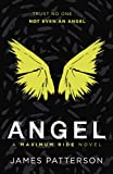 Patterson, James: Angel (Maximum Ride)