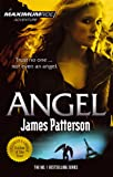 Patterson, James: Maximum Ride Angel