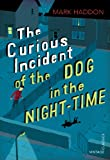 Mark Haddon: Curious Incident of the Dog in the Night-Time (Vintage Childrens Classics)