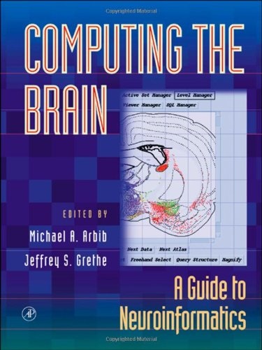 computing-the-brain-a-guide-to-neuroinformatics