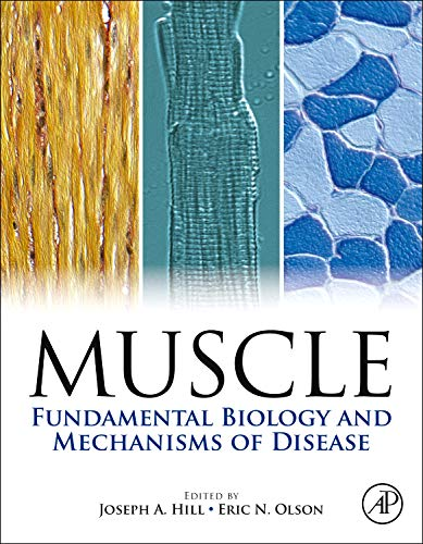 muscle-2-volume-set-fundamental-biology-and-mechanisms-of-disease