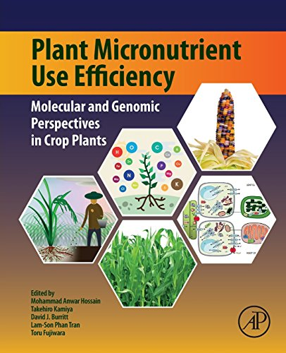 plant-micronutrient-use-efficiency-molecular-and-genomic-perspectives-in-crop-plants
