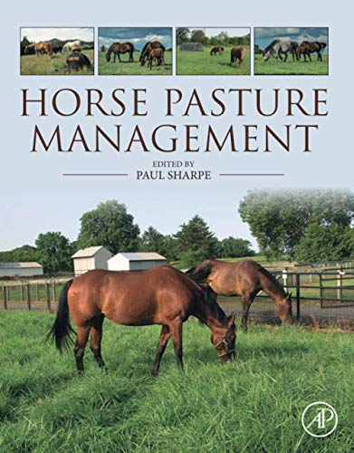 horse-pasture-management