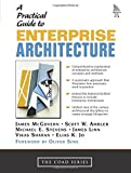 Stevens, Michael E.: A Practical Guide to Enterprise Architecture